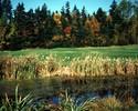 Prince Edward Island-Golf travel-Glen Afton Golf Club Central